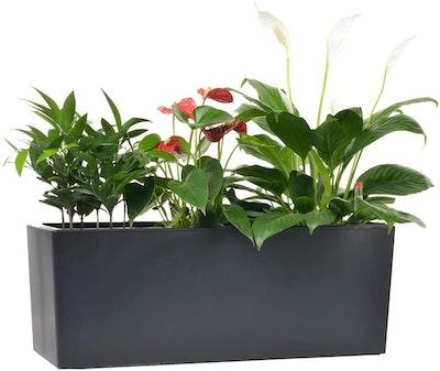 GardenBasix Self Watering Planter Pot
