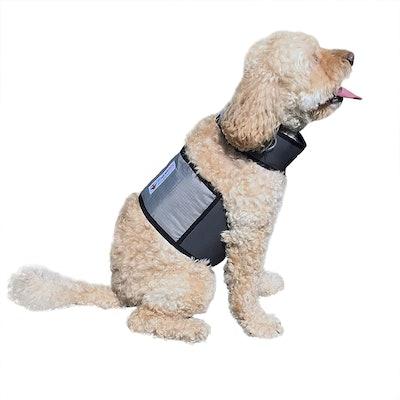 CoolerDog Dog Cooling Vest and Cooling Collar