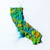 California's order may have saved 1,600 lives in one month