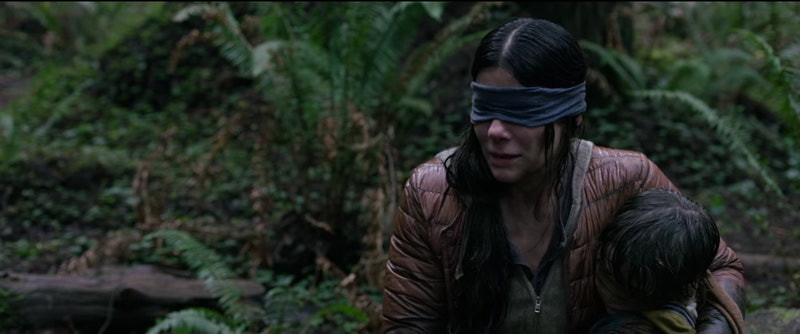 Bird Box Netflix Sequel