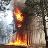 """Arctic wildfires: 5 reasons why """"alarm bells should be ringing"""""""