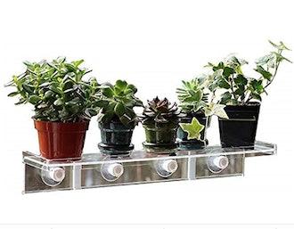 LaBrinx Designs Large Suction Cup Shelf