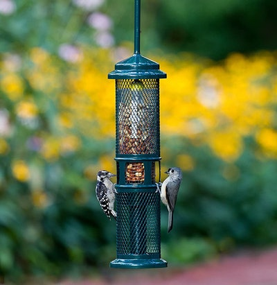 Brome Squirrel Buster Peanut+ Squirrel-Proof Bird Feeder