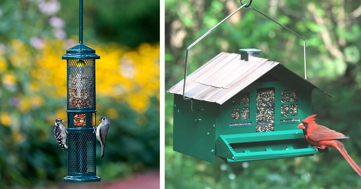 These Genius Bird Feeders Keep Squirrels From Eating All Seed
