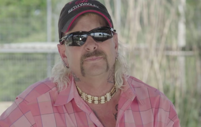 A new Animal Planet documentary called 'Surviving Joe Exotic' introduces the animals of 'Tiger King.'