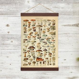 Vintage Mushroom Illustration