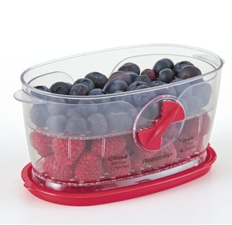 Prepworks by Progressive Berry Keeper