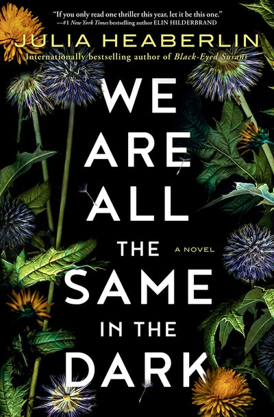 'We Are All the Same in the Dark' by Julia Heaberlin