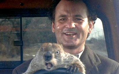 Groundhog Day leaves Netflix in August.