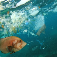 How could Earth's plastic pollution problem look by 2040? Here's what we predict.