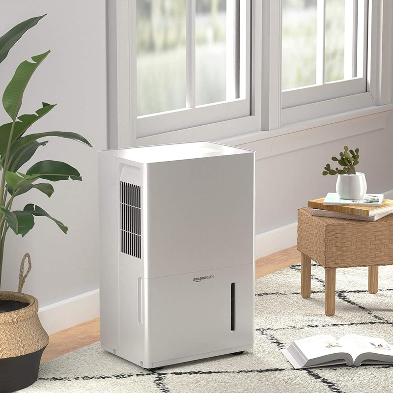 best dehumidifiers with pumps
