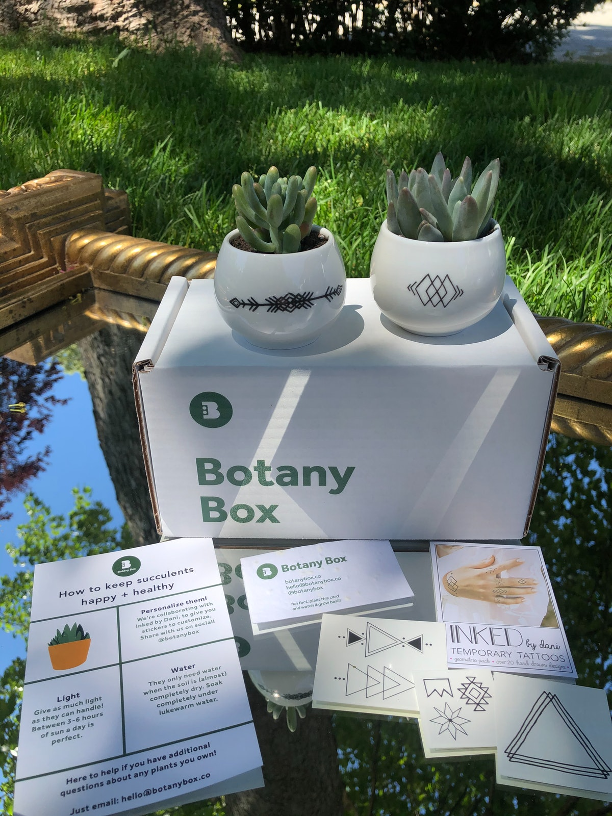 Botany Box Duo With INKED By Dani