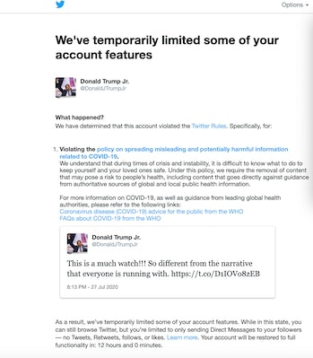 A screenshot detailing the temporary limitations on Donald Trump Jr.'s Twitter account.