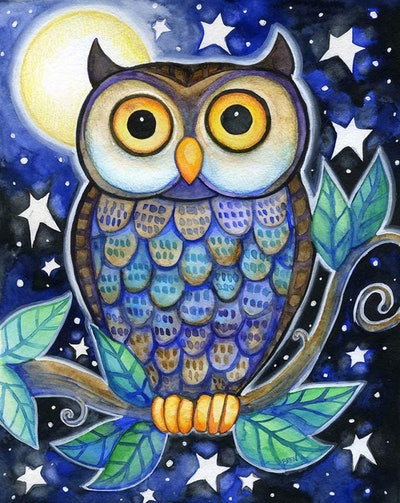 Toudorp Gentle Owl Paint By Numbers Kit