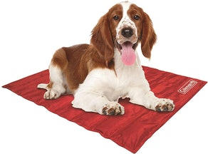 Coleman Pressure-Activated Cooling Pet Pad