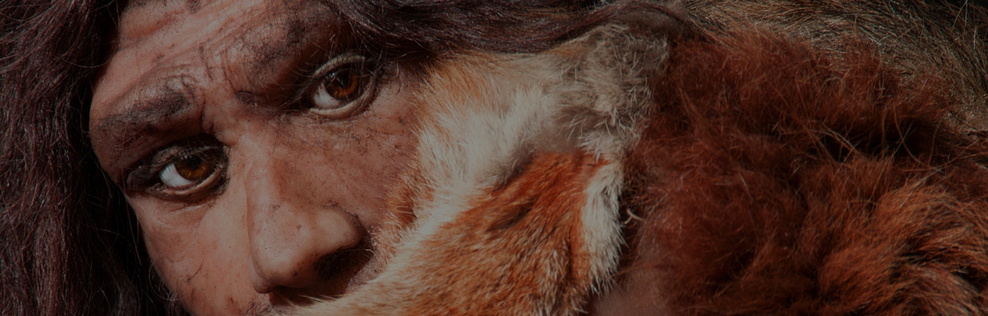 Close-up of a Neanderthal.