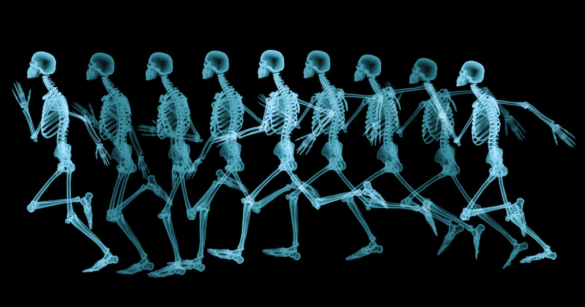 Mouse study reveals how running can prevent a downside of aging