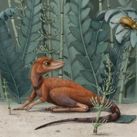 Scientists find a 237-million-year-old miniaturized origin for giant dinosaurs