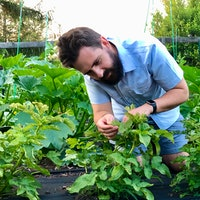 Covid-19 gardening: How to win against the pests