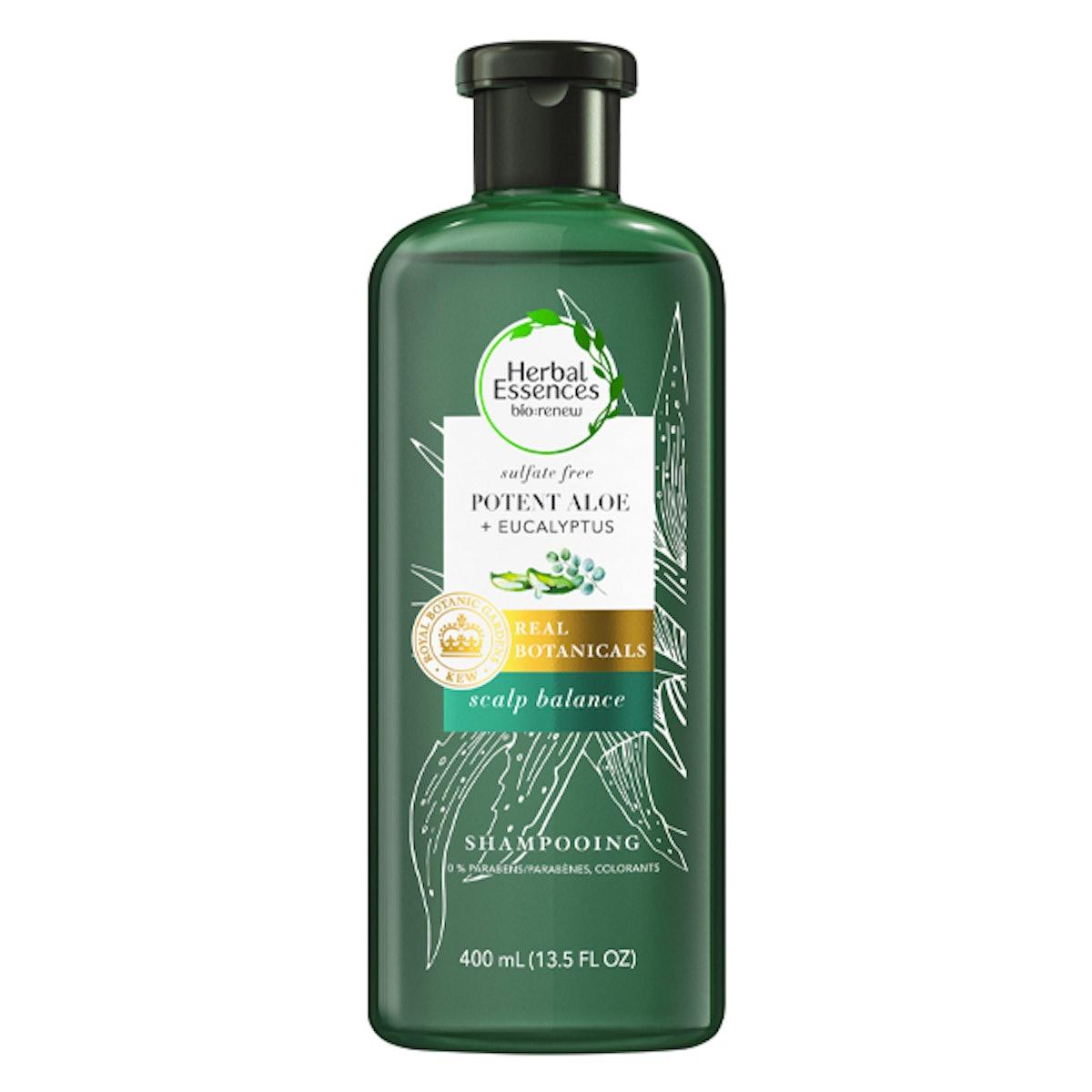 Potent Aloe + Eucalyptus Shampoo