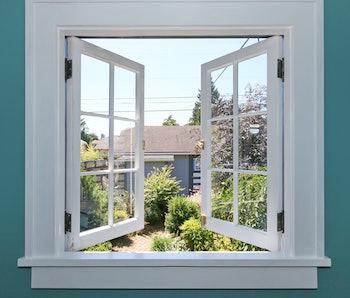 Open window into the backyard.
