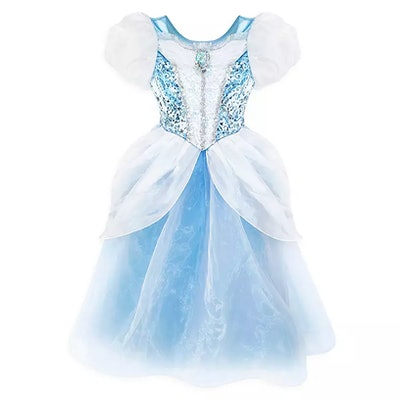 Cinderella Adaptive Costume
