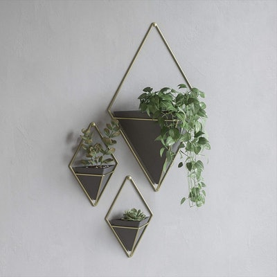 Umbra Wall Planters (Set of 2)