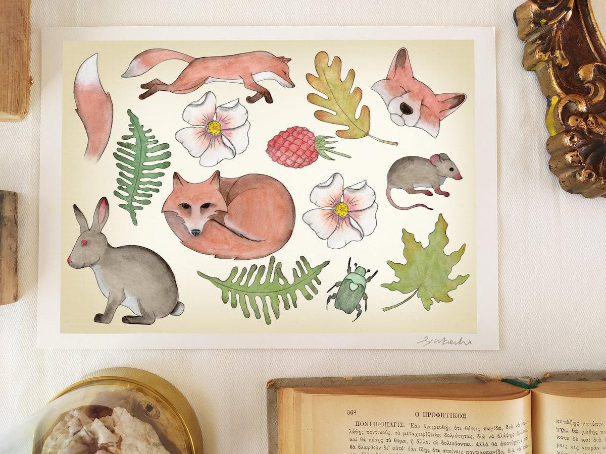 Fox - Natural History Plate