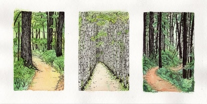 Three Paths - Ink Over Watercolor Illustrations