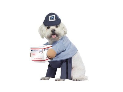 dog in usps mail carrier costume
