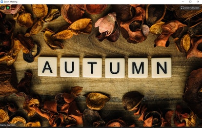 Here are festive fall Zoom backgrounds to spice up your video calls.