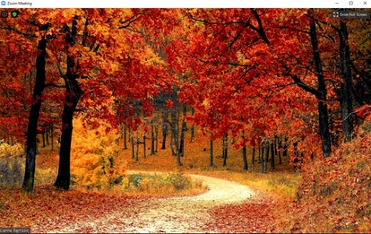 These fall Zoom backgrounds will have you so ready to celebrate the season.