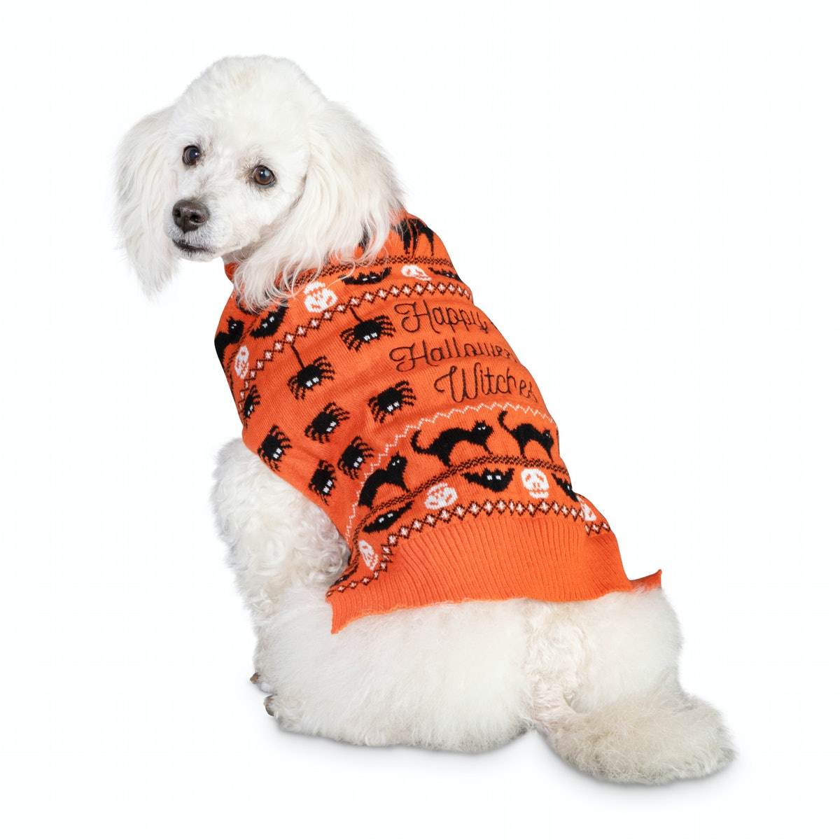 Bootique Wildly Wicked Sweater Dog Costume