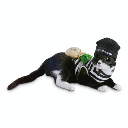 Bootique Crooked Cat Costume