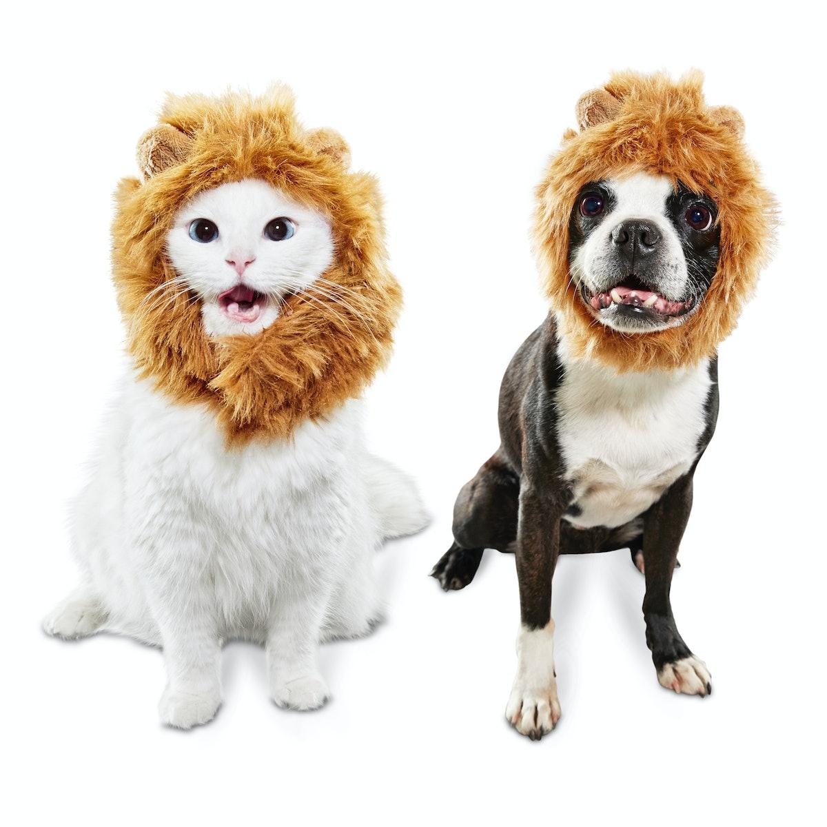 Bootique Mane Event Lion Pet Costume