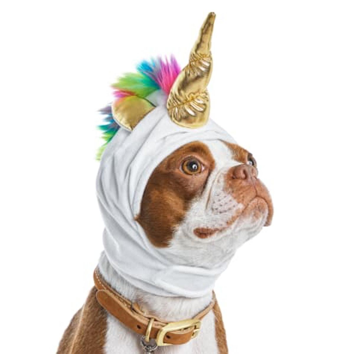 Bootique Born To Unicorn Dog Costume
