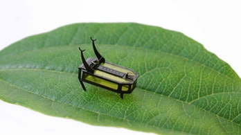 The RoBeetle is a tiny alcohol powered robot.