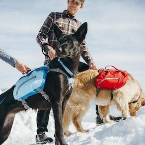 Kurgo Dog Saddlebag Harness