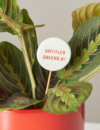 Untitled Greens #1 Message Pop