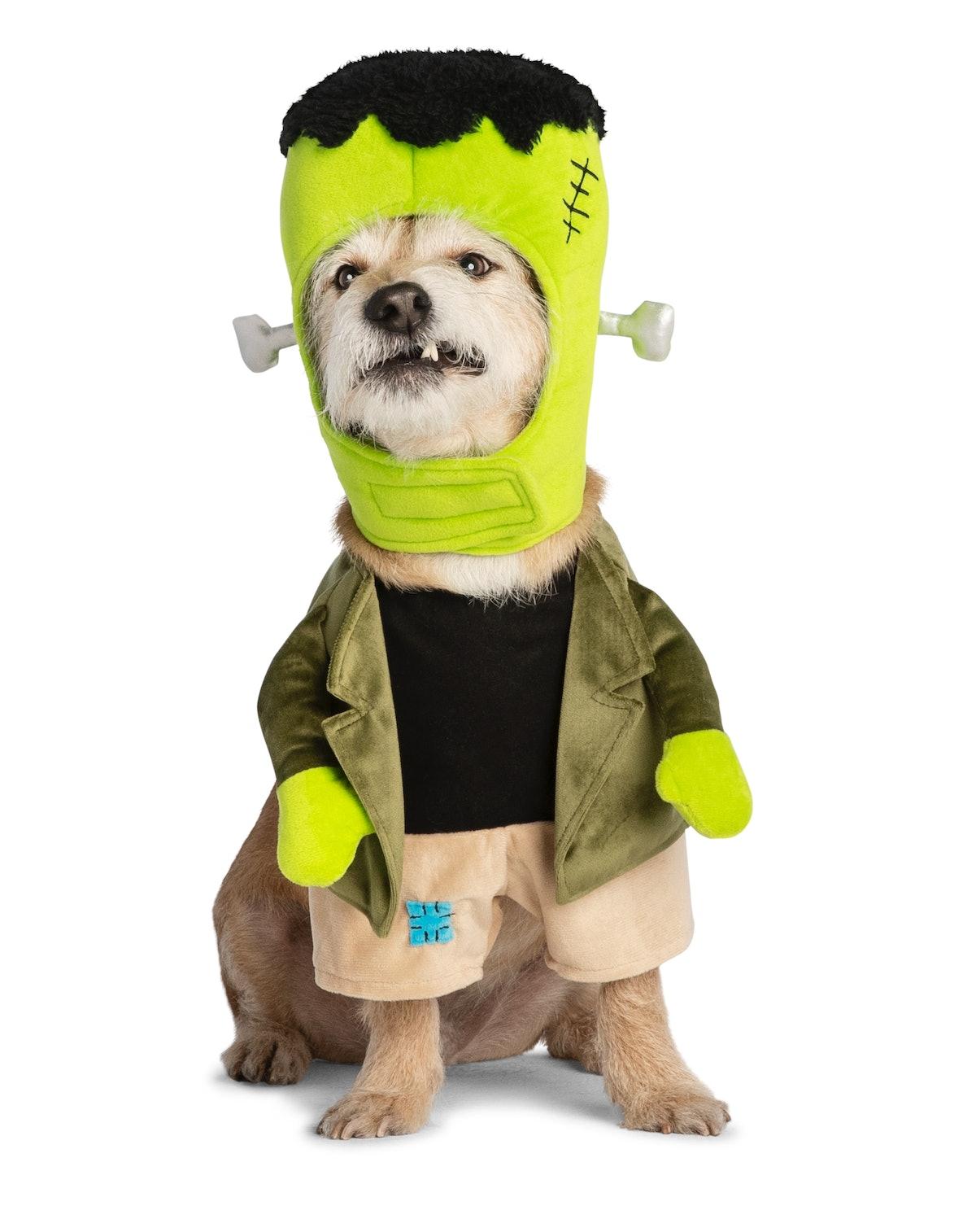 Thrills & Chills™ Pet Halloween Monster Pet Costume