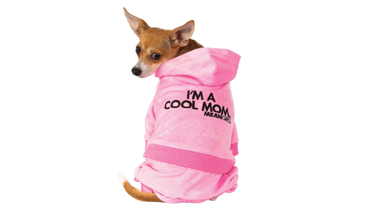A dog wear a pink 'Mean Girls' mom track suit looks back.