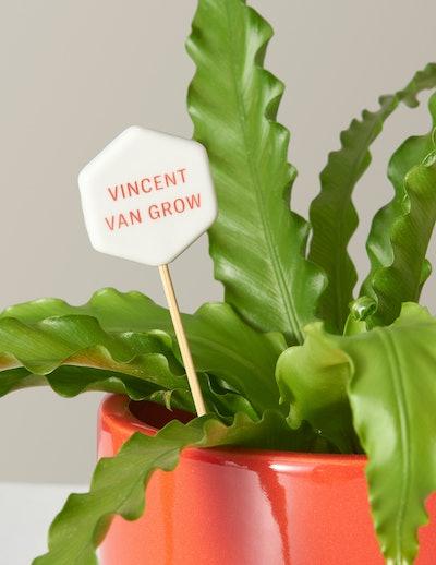 Vincent van Grow Message Pop