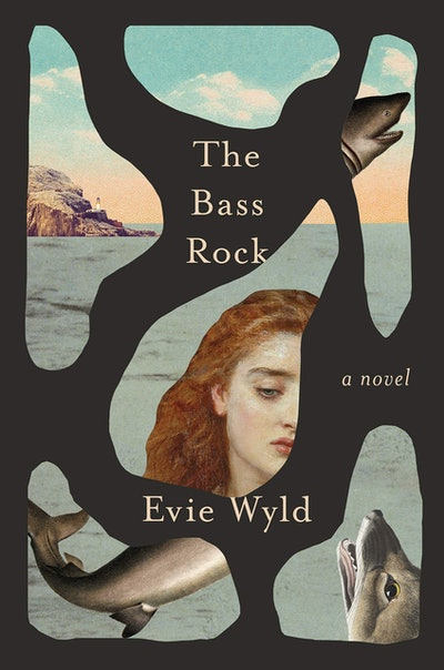 'The Bass Rock' by Evie Wyld
