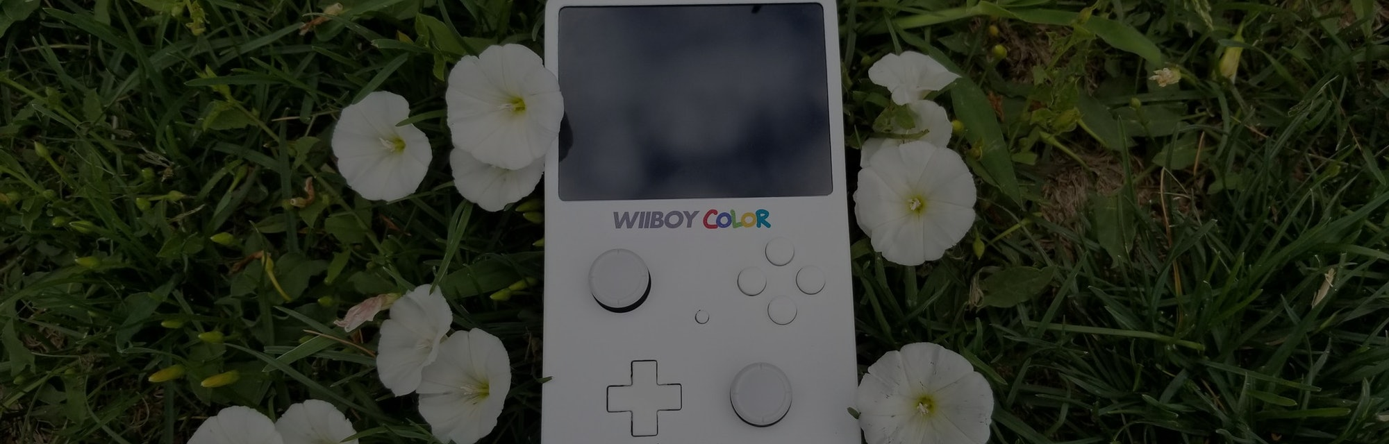 A photo of the WiiBoy Color