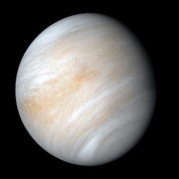 Venus, as seen by Mariner 10.
