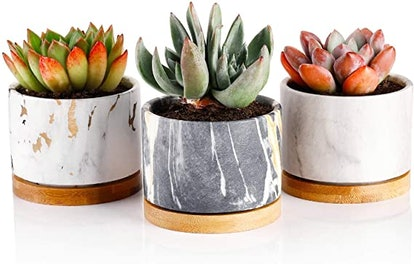 Greenaholics Marble Pattern Planters (3-Pack)