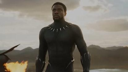 Chadwick Boseman's Black Panther is streaming on Disney+.