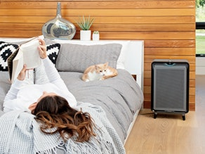 Bissell Smart Purifier With HEPA