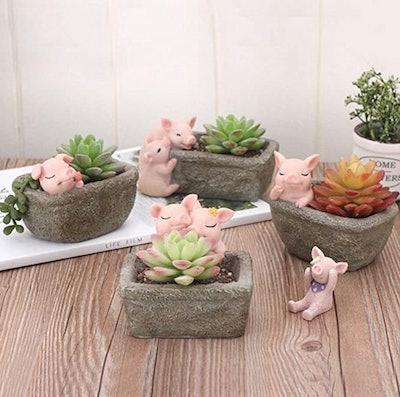 Garden Pig Succulent Pot