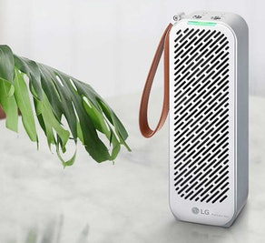 LG PuriCare Mini Air Purifier